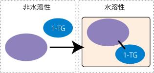 (図1)化学反応用原料